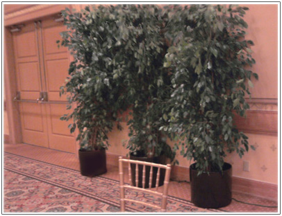 Ficus-in-black-formal-event-in-Monterey Image