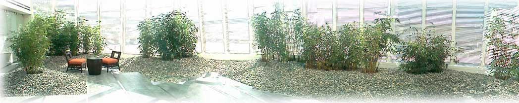 Bamboo Zen Garden Related Keywords Bamboo Zen Garden